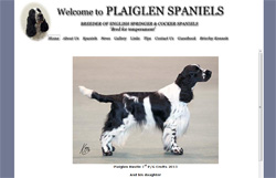 Plaiglen kennels